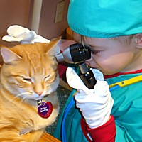 Child Care Health Vet